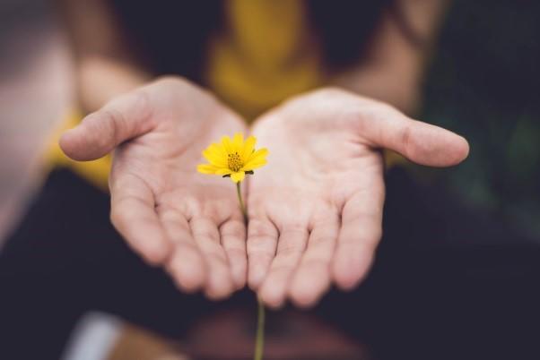 Vergeven en vergeten, deel 3: Wanneer zijn we zover dat we willen vergeven